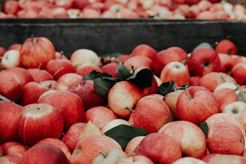 jablka-na-sok-jablkowy