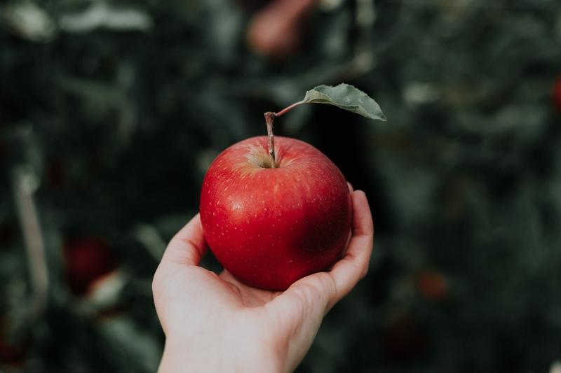 najlepsze-na-sok-jablkowy-sa-polskie-jablka